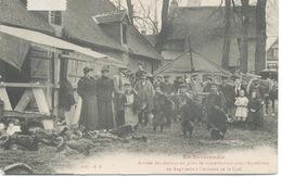 61 - Arrivée Des Dindons Au Point De Concentration Pour L'expédition En Angleterre à L'occasion De Noel. - France