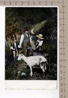 Chevrier Et Chèvres - Chèvre / Ziege / Goat / Capra - Animaux & Faune