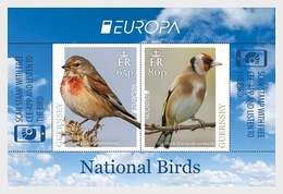 Guernsey - Postfris / MNH - Sheet Europa, Vogels 2019 - Guernsey