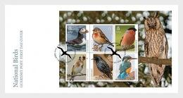 Guernsey - Postfris / MNH - FDC Sheet Europa, Vogels 2019 - Guernsey