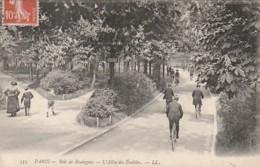 ***75  ***  PARIS   Le Bois De Boulogne L'allée Des Erables  - TTB - Parks, Gardens