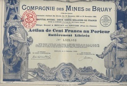 ACTION DE CENT FRANCS - COMPAGNIE DES MINES DE BRUAY - ANNEE 1939 - Mines