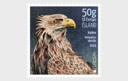 IJsland / Iceland - Postfris / MNH - Complete Set Europa, Vogels 2019 - 1944-... Republiek