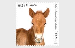 IJsland / Iceland - Postfris / MNH - Complete Set Jonge Dieren 2019 - 1944-... Republiek