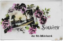 SAINT - MEDARD ..-- Souvenir De .....Vers NEUFCHATEAU ( Melle Monique ROBINET ) . Voir Verso , Taches . - Herbeumont
