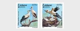 Litouwen / Lithuania - Postfris / MNH - Complete Set Europa, Vogels 2019 - Litouwen