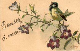 OISEAU - Birds
