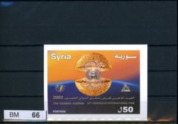 Syrien, Xx, Block 102 - Syria