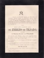 HAMEL LUMMEN Marie-Anne De ZEREDO De TEJADA Veuve Van WILLIGEN  68 Ans 1893 Faire-part - Décès