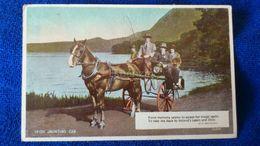 Irish Jaunting Car Ireland - Irlanda