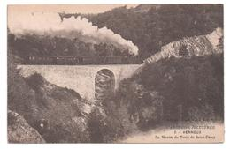07.336/ VERNOUX - La Montée Du Train De St Peray - Vernoux