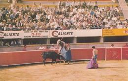 TIJUANA , Mexico , 50-60s ; Bull Fighting - Corrida