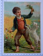 CHROMO LITHOGRAPHIE GRAND FORMAT........GARÇON ...CHAMP DE BLÉ ...CHÈVRE QUI MANGE DES FLEURS - Vieux Papiers