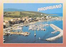 Corse        H475        PROPRIANO ( Le Port ) - France