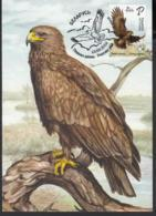 Belarus Weissrussland MNH** 2019 Bird Of The Year. Greater Spotted Eagle Mi 1291 Max M - Vögel