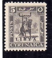 LIBIA LIBYA 1951 REGNO INDIPENDENTE EMISSIONE PER LA CIRENAICA CYRENAICA 5m MNH - Libia