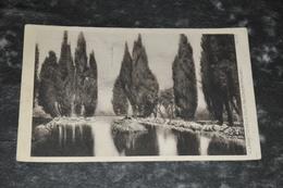 5806   IL LAGHETTO NELLA FALCONIER, FERROVIA - 1921 - Italy