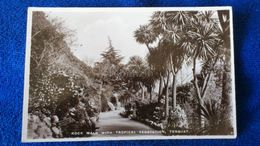 Rock Walk With Tropical Vegetation Torquay England - Torquay