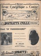 L'ELEVEUR - REVUE CYNEGETIQUE E CANINE - N. 2358 19 AVRIL 1931 - Libri, Riviste, Fumetti