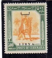 LIBIA LIBYA 1951 REGNO INDIPENDENTE EMISSIONE PER LA CIRENAICA CYRENAICA 500m MNH FIRMATO SIGNED - Libia