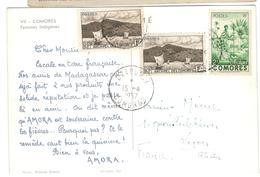 16124 - Publicitaire  Pour AMORA - Isole Comore (1950-1975)