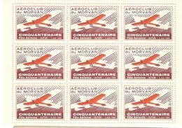 16130 - FETE AERIENNE AUTUN - Posta Aerea