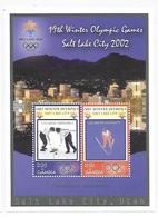 Gambia 2002 Winter Olympics Salt Lake City S/S MNH - Gambie (1965-...)