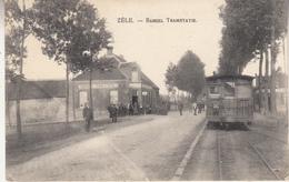 Zele - Zèle - Bareel Tramstatie - Stoomtram - Phototypie Marco Marcovici, Brussel - Tramways