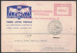 AP90   Italia 1956  Red Meter, EMA Freistempel - Consorzio Agrario Provinciale - Torino - Affrancature Meccaniche Rosse (EMA)