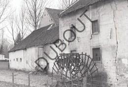 EBEN-EMAEL - Originele Foto Jaren '70 A.Carre (Q15) - Bassenge