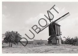 SAINT SAUVEUR - Originele Foto Jaren '70 A.Carre (Q32) - Frasnes-lez-Anvaing