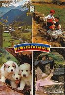 Andorra  Arinsal Canillo  Chiens Des Pyrénées  Timbrée 1987 2 Timbres - Andorra