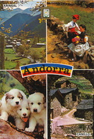 Andorra  Arinsal Canillo  Chiens Des Pyrénées  Timbrée 1987 2 Timbres - Andorre