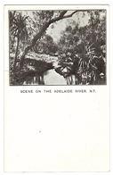 SCENE ON THE ADELAIDE RIVER, N. T. - Australie