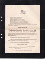 SAINT-JOSSE-TEN-NOODE Sophie-Léonie TSCHAGGENY 58 Ans 1911 Familles MORIN Et TERMOTE Enterrée EVERE - Décès