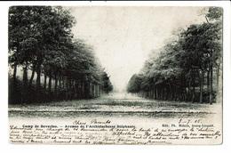 CPA - Carte Postale   Belgique-Camp De Beverloo- Avenue De Archiduchesse Stéphanie-1905 VM2288 - Beringen