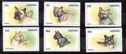 Serie De Lesotho Nº Yvert 1291/96 ** GATOS (CAT) - Lesotho (1966-...)