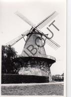 BOECHOUT Originele Foto Jaren '70 A.Carre Moulin/Molen (Q78) - Boechout