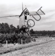 HEULTJE Westerlo Originele Foto Jaren '70 A.Carre Moulin/Molen (Q37) - Westerlo