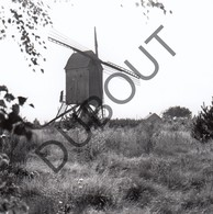 HEULTJE Westerlo Originele Foto Jaren '70 A.Carre Moulin/Molen (Q38) - Westerlo