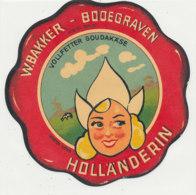 V 226 / ETIQUETTE DE FROMAGE  VOLLFETTER GOUDAKASE HOLLANDERIN - Quesos