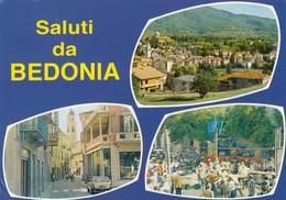 12311-SALUTI DA BEDONIA(PARMA)-FG - Saluti Da.../ Gruss Aus...
