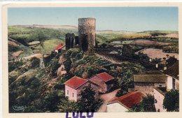 DEPT 42 : édit. Cim : Saint Maurice Sur Loire , Vieilles Tours - Autres Communes