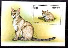 Hoja Bloque De Lesotho N ºYvert 127 ** GATOS (CAT) - Lesotho (1966-...)