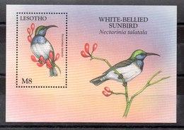 Hoja Bloque De Lesotho N ºYvert 128 ** PAJAROS (BIRDS) - Lesotho (1966-...)