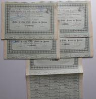 Minerais De Fer De KRIVOÏ-ROG - Paris 1901 - 5 Titres Avec Coupons - Industrie