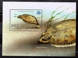 Hoja Bloque De Lesotho N ºYvert 140 ** PECES (FISHES) - Lesotho (1966-...)