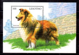 Hoja Bloque De Lesotho N ºYvert 143 ** PERROS (DOG) - Lesotho (1966-...)
