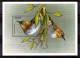 Hoja Bloque De Lesotho N ºYvert 146 ** PAJAROS (BIRDS) - Lesotho (1966-...)