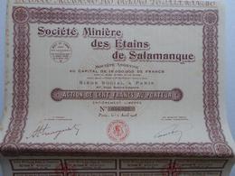 Société Minière Des Etains De Salamanque Paris 1928 - Titre Avec Coupons Complets - Mines